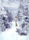 Narnia Card