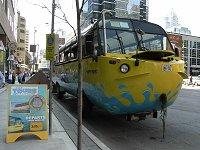 Hippo_bus